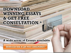 FREE Essay Samples & Consultation